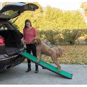 PG9166GRSX pet ramp