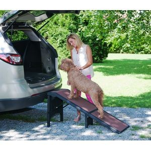 PG9956XL extra wide pet ramp