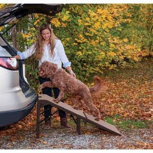 PG9956XLCR extra wide pet ramp